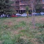 Parco via Locke